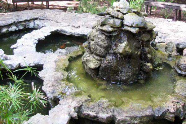 Jardin-Botanico-02