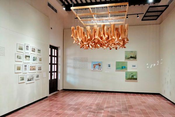 museo_guanal2